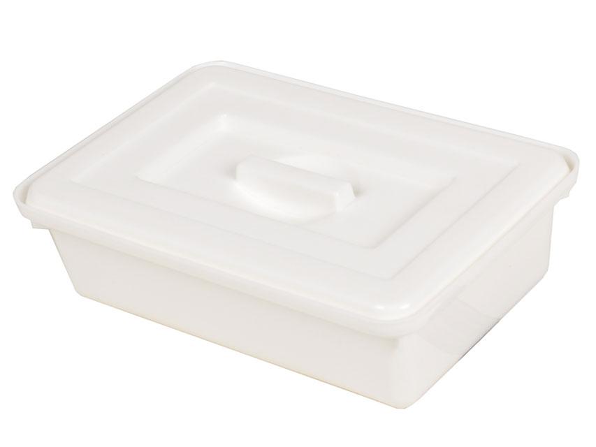 INSTRUMENT TAVA  cu capac   220x150x70 mm - material plastic