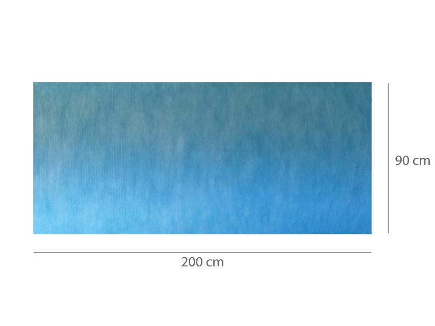 COVOR ABSORBANT IMPERMEABIL pre-tăiat 90x200 cm
