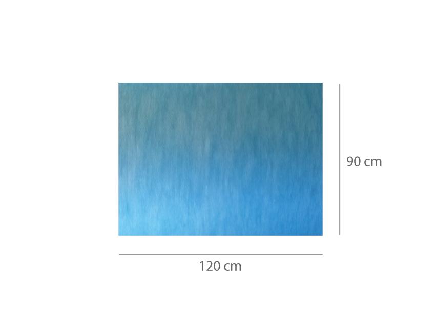 COVOR ABSORBANT IMPERMEABIL pre-tăiat 90x120 cm