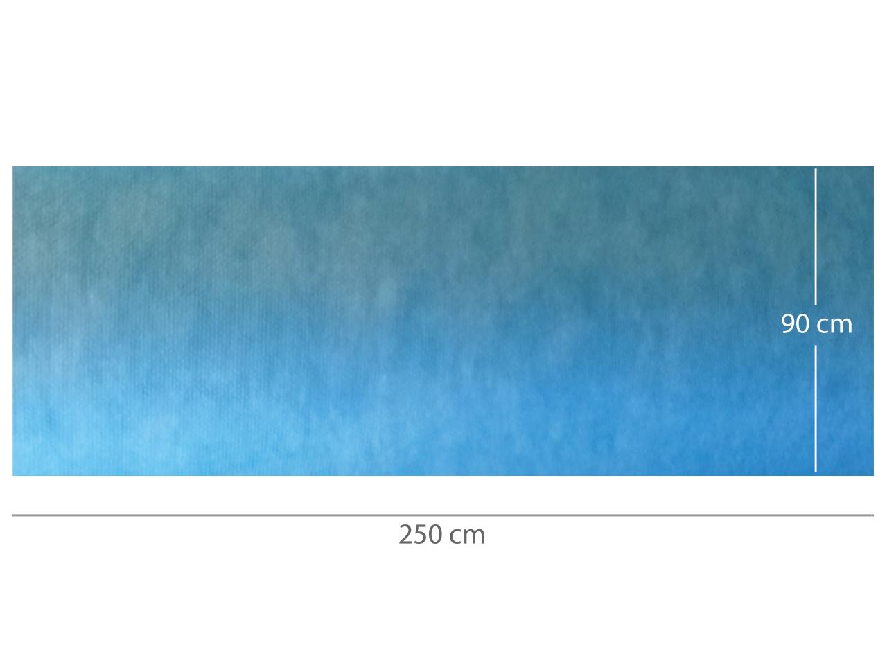 COVOR ABSORBANT IMPERMEABIL pre-tăiat 90x250 cm
